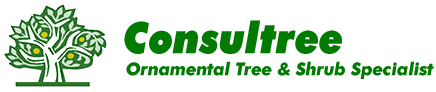 Consultree Mobile Logo